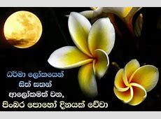 Medin Full Moon Poya Day