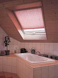 Vorhänge Für Dachfenster : plissee vorhaenge ~ Markanthonyermac.com Haus und Dekorationen