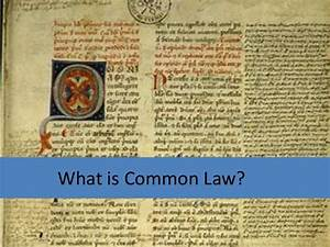 Lecture 1 Part 2   What Is The Common Law