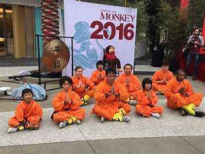 Shaolin Temple Martial Arts Academy - Providing the best ...