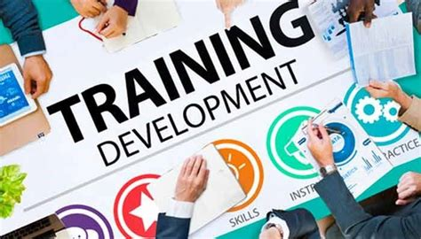 killer strategies  training  development