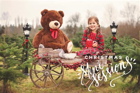 2017 holiday christmas mini sessions seattle family