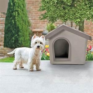 Niche Petit Chien : niche pour petit chien zeus ~ Melissatoandfro.com Idées de Décoration