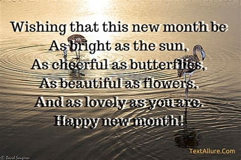 top 10 happy new month messages for textallure