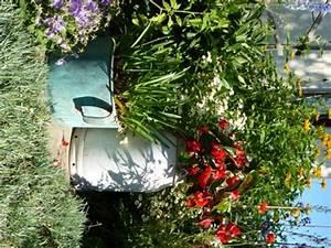 Sommerblumen Für Schatten : gartenpflanzen baeume stauden zwiebel ~ Michelbontemps.com Haus und Dekorationen