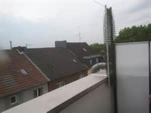 katzen balkon schiebbares katzennetz vom marktführer für katzennetz installation