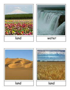 printable land water air sorting cards