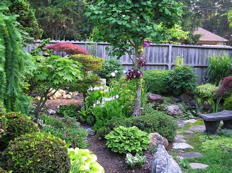 asian garden plants small space asian garden a variety of beautiful well kept plants make up this garden which