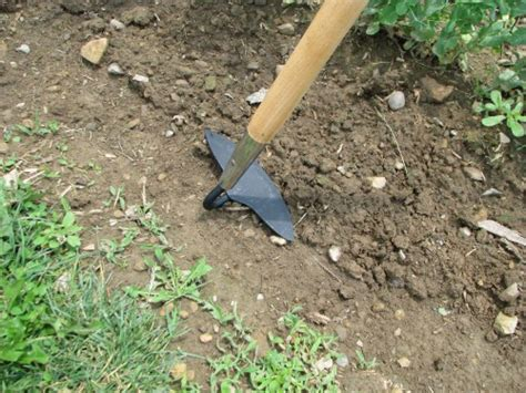 Crucial Gardening Tools You Must Have For Your Garden