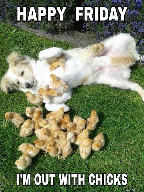 happy friday dog meme memezilacom