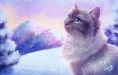 Cat Winter Snow Cats Wallpapers Madsen Elisabeth