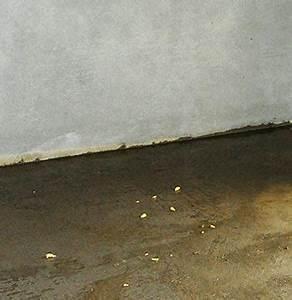Feuchtigkeit Im Haus : defekter wand boden anschluss am neubau nach 1989 bas ~ Lizthompson.info Haus und Dekorationen