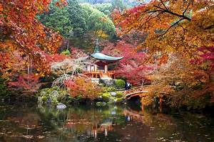 Top 10 Temples And Shrines For Koyo  U0026 Momiji In Kyoto