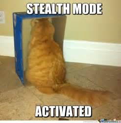 cat memes stealth mode activated cat meme cat planet cat planet