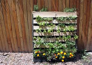 Diy inspiration the vertical herb garden to the bones for Vertical pallet garden