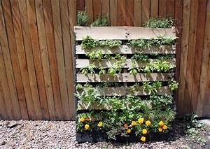 Diy inspiration the vertical herb garden to the bones for Vertical pallet garden