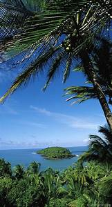 Artisanat De Guyane : les 524 meilleures images concernant guyane sur pinterest ~ Premium-room.com Idées de Décoration
