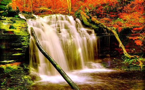 Autumn Forest Waterfall Nature Aiyumn Hd Background ...