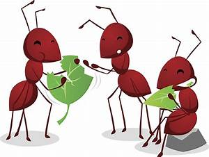 The Ants Go Marching Kids Environment Kids Health National Institute of Environmental Health