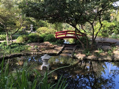 Gardens In Miami by Miami Botanical Garden To Expand To Collins Canal