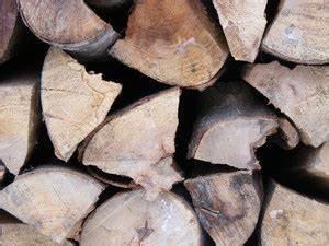 Fertiggaragen Aus Holz : holz fertiggarage fertiggaragen wissen ~ Articles-book.com Haus und Dekorationen