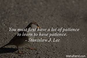 Stanislaw J. Lec Quote: You must first have a lot of ...