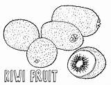 Kiwi Coloring Fruit Pages Food sketch template
