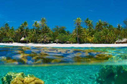 flights  fiji   return south pacific travel travel overwater bungalows
