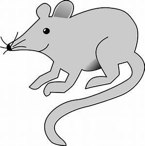 Mouse Clip Art at Clker.com - vector clip art online ...