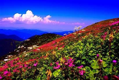 Desktop Spring Wallpapers Mountain Nexus 2000 Wallpapersafari