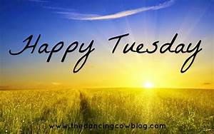 Happy Tuesday evening! – The New Forest Inn  Tuesday