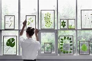 Cadre Entre Deux Verres : diy cadre entre deux verres diy herbier faire un herbier ~ Dailycaller-alerts.com Idées de Décoration