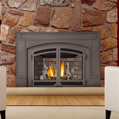 Decorative Fireplace Insert Home Design