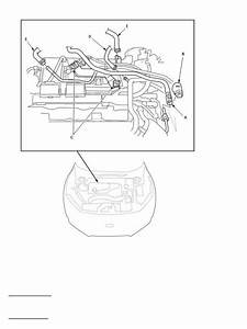 Engine Mechanical System Page 383