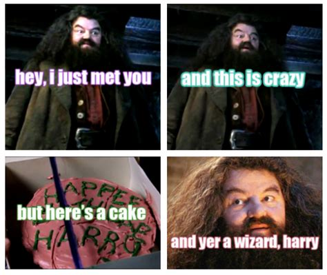 You Re A Wizard Harry Meme - image 316989 you re a wizard harry know your meme