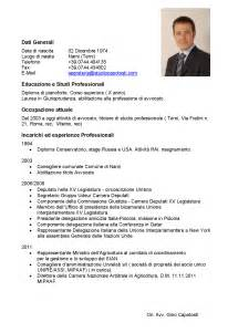 Best Professional Curriculum Vitae Sles by Guidelines For Writing Curriculum Vitae 28 Images Cv