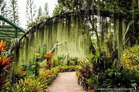 Botanischer Garten Singapur Unesco by Singapur Zoo Botanischer Garten Singapur
