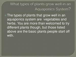 Aquaponics  Environmental Science