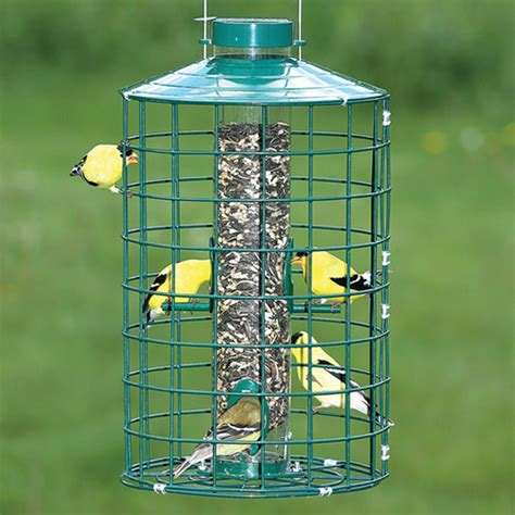 duncraft com duncraft 25003 weather guard bird feeder