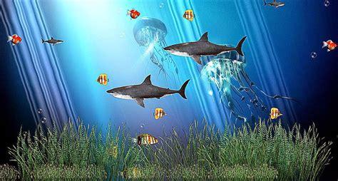 Free Animated Wallpapers And Screensavers - aquarium wallpapers for windows 8 wallpapersafari