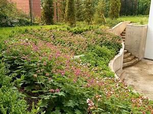Böschung Bepflanzen Fotos : der garten mit steingarten ist fertig ~ Orissabook.com Haus und Dekorationen