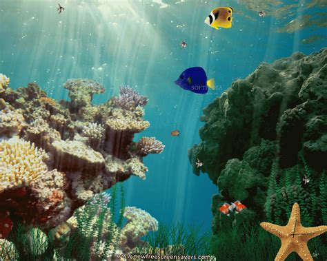 Animated Underwater Wallpaper - animated underwater wallpaper wallpapersafari
