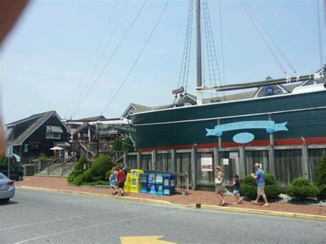 Boat Rentals Lbi New Jersey by Best 7 Island Images On
