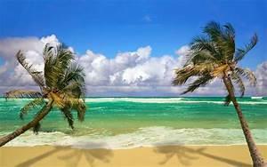 palm beach island images