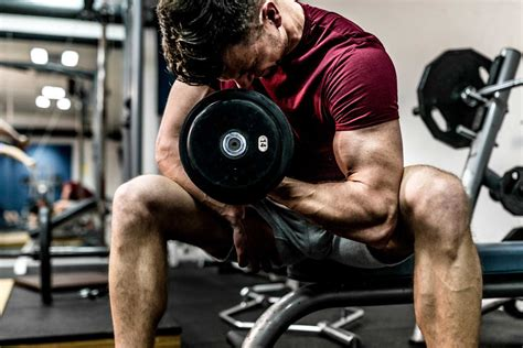 muscle week working curl many bicep pump should build zone double arm arms biceps massive enough curls fitness weights lift
