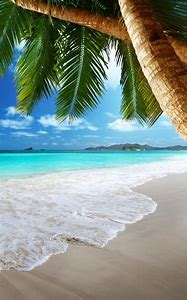 Google Images Tropical Beaches
