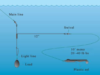 Best Saltwater Fishing Boats For Beginners by Fishing In Ireland An Angler S Guide To The Best Fishing