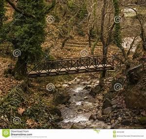 Petit Pont En Bois : petit pont en bois au dessus d 39 un courant dans la for t l 39 hiver photo stock image 48440480 ~ Melissatoandfro.com Idées de Décoration