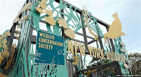 coney island aquarium hours new york aquarium explore