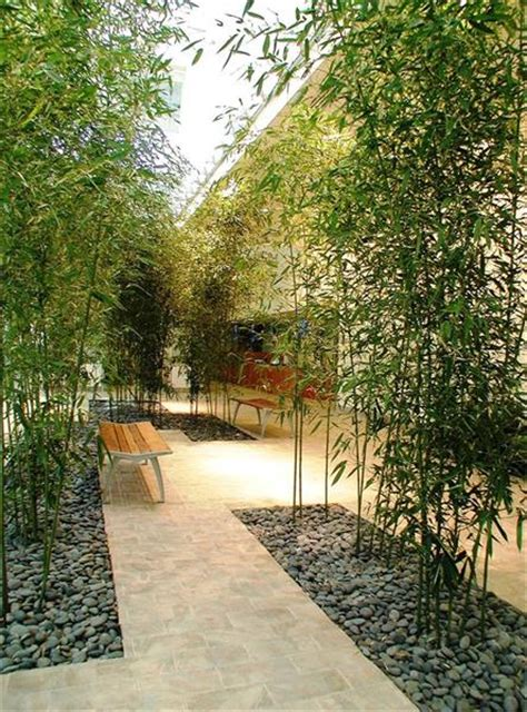 bamboo garden nj indoor landscaping projects mini distinctive landscapes